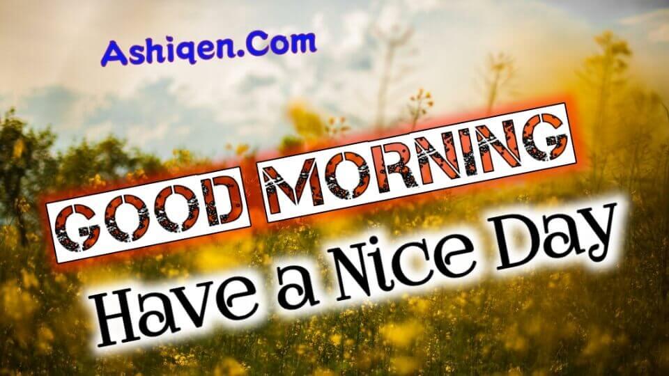 Top 10 Good morning image | New good morning photos 2020